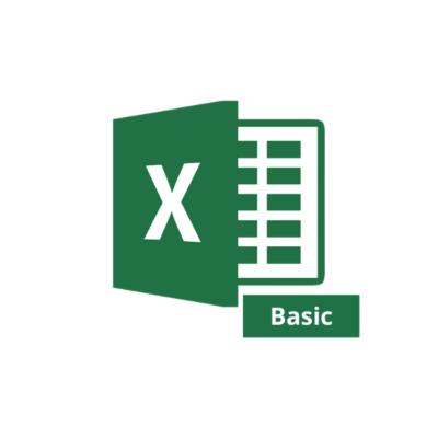 MS Excel Basic